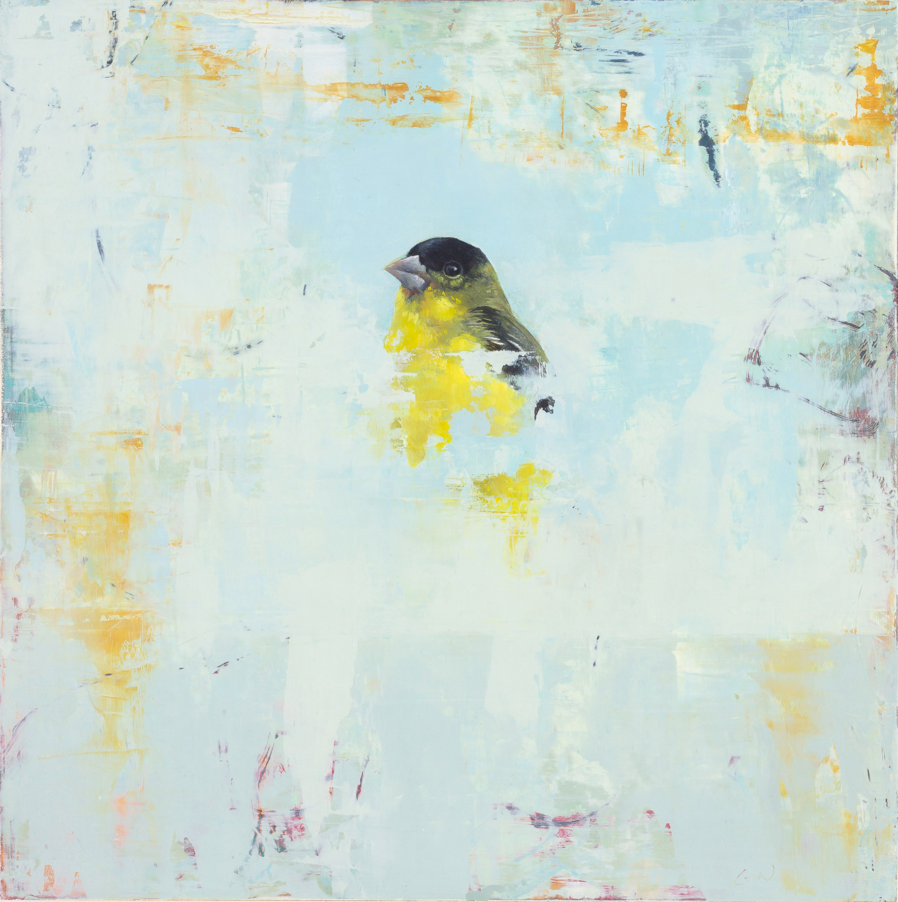 Lesser Goldfinch  2018 oil on panel 10 x 10 inches   Sold