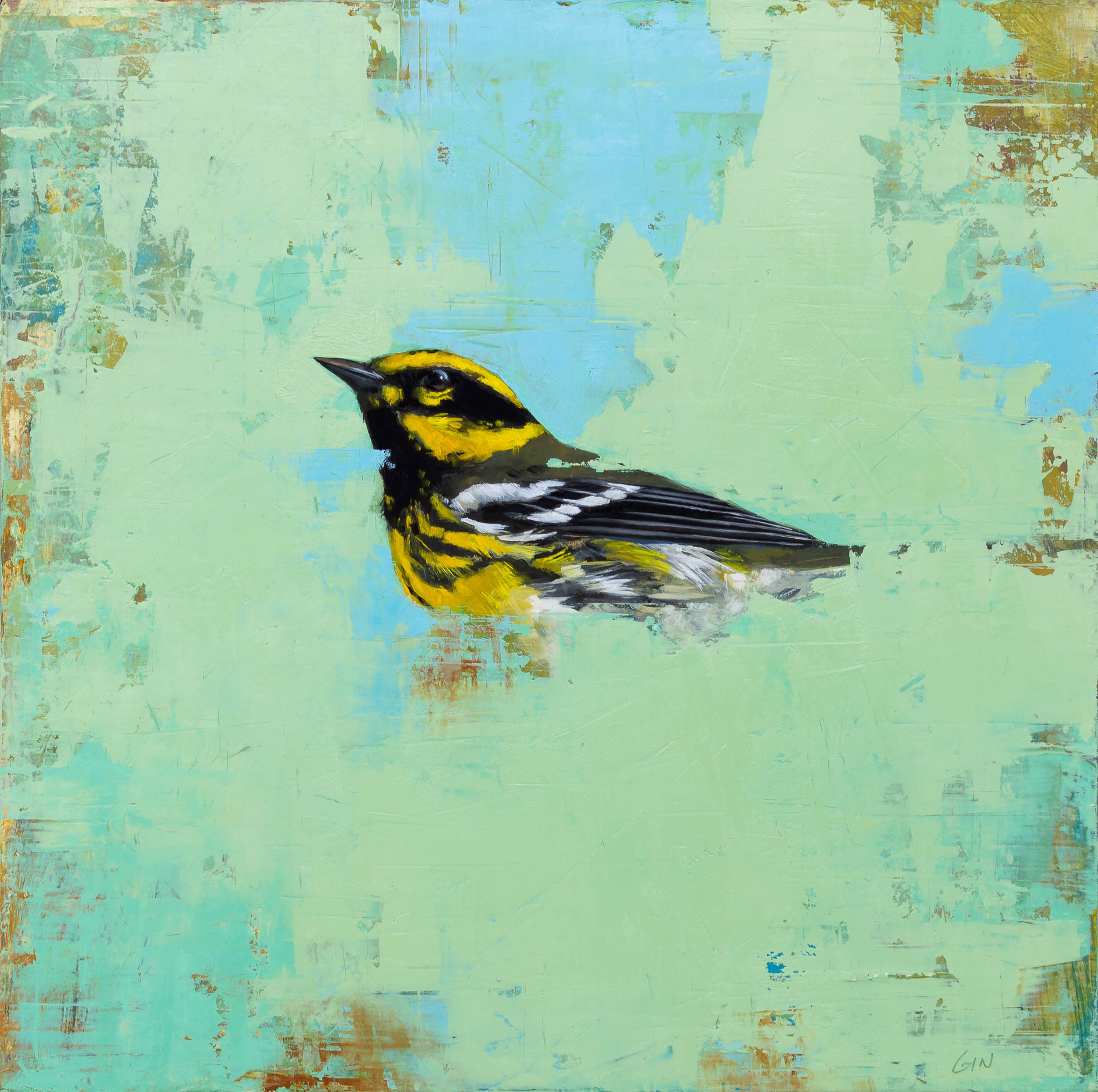 Townsend's Warbler  2018 oil on panel 10 x 10 inches   Sold