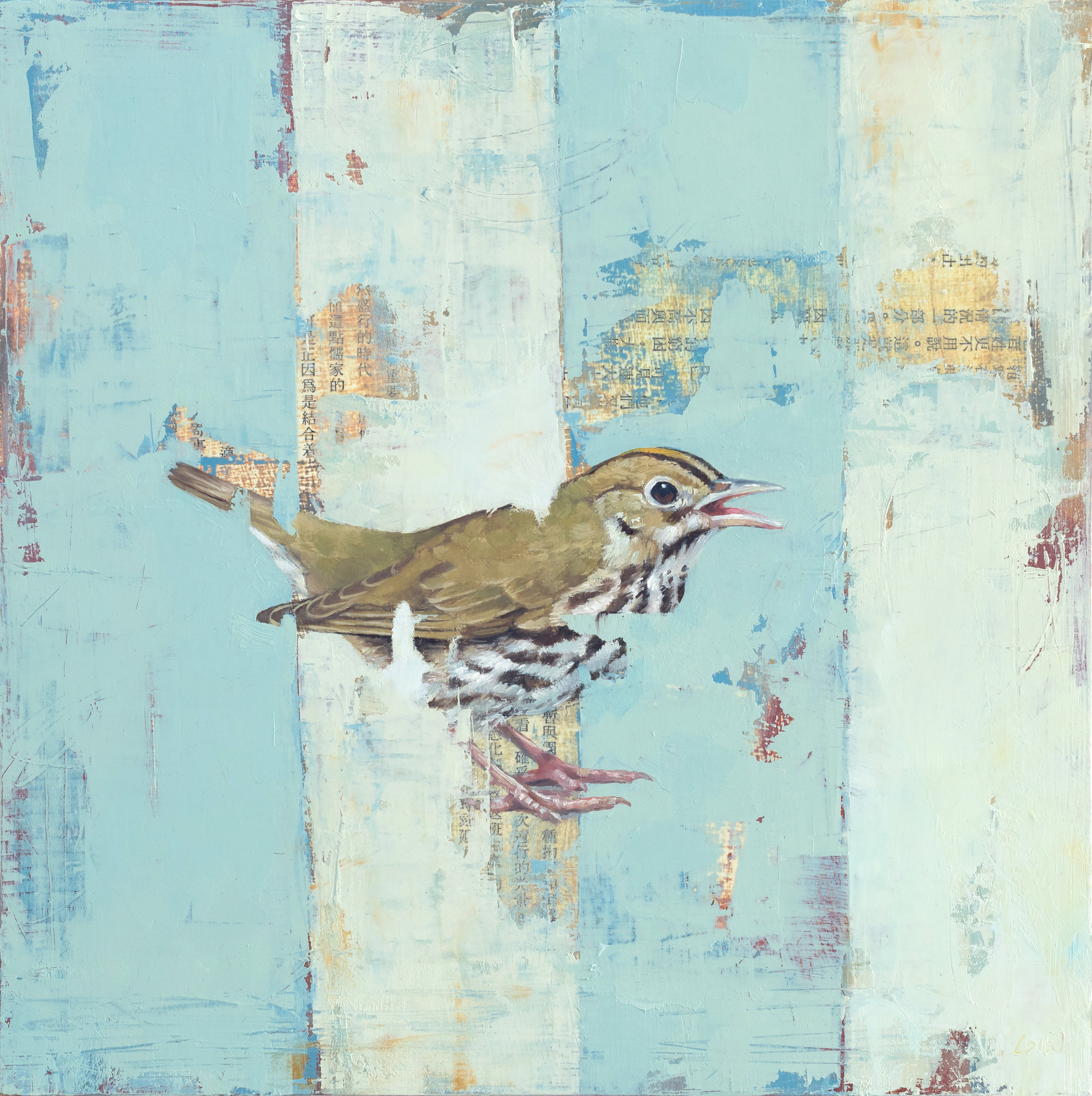 Ovenbird  2019 oil and collage on panel 10 x 10 inches  available at  Water Street Gallery