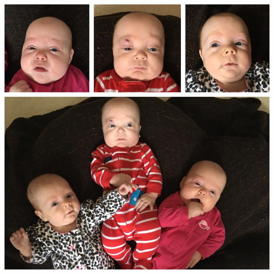 4 months old. (Top Left & Bottom Right) Isabella @ 11lbs, 9oz;(Middle) Xander @ 12lbs, 1oz (Top Right & Bottom Left) Elly @ 8lbs, 10oz