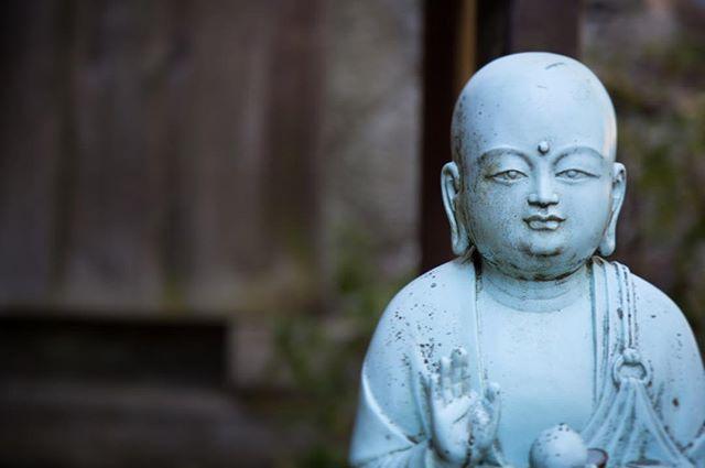 #littlebuddha #danick #kyoto