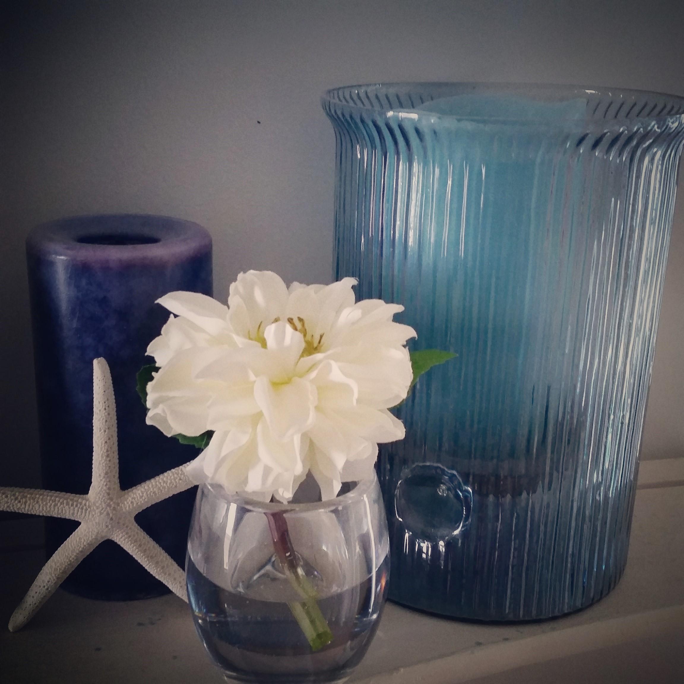 Candle Starfish Flower Hurricane.jpg