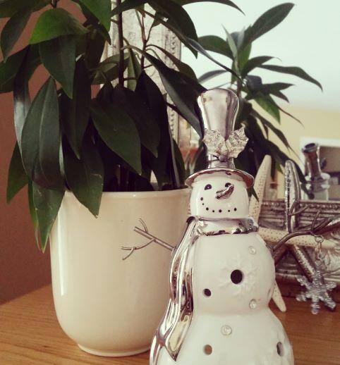 16 Jan - Pic #4 - Snowman.jpg