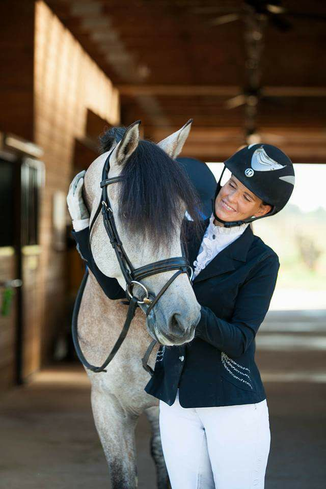 Announcing......... - Jennifer Flowers Dressage is proud to be a partner with Coves Darden Farm, LLC to bring quality PRE Dressage horses for sale in North Carolina. Visit us in Statesville, or let us meet you in Aiken, to find your perfect Dressage partner.