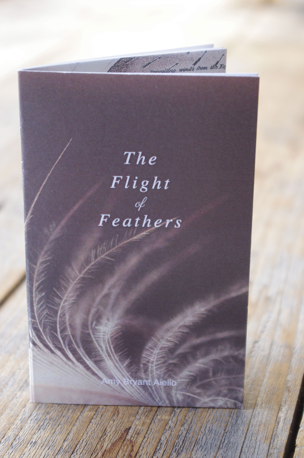 FLIGHT  of  FEATHERS