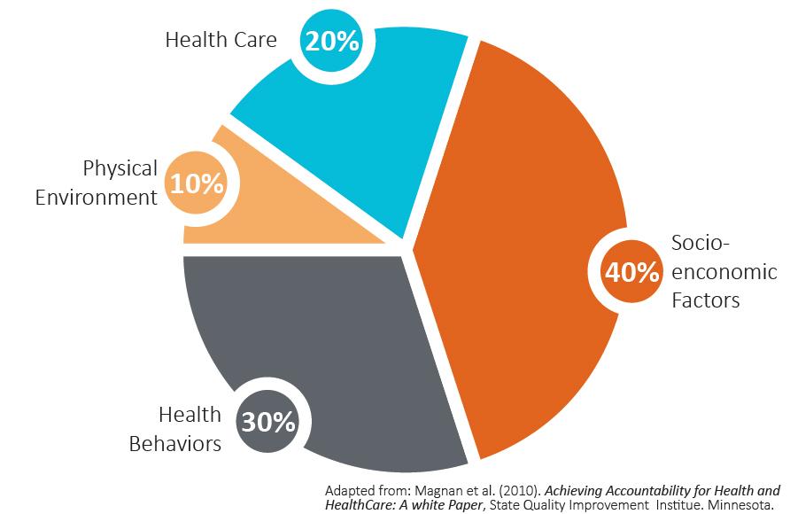 HealthDeterminates_chart.jpg