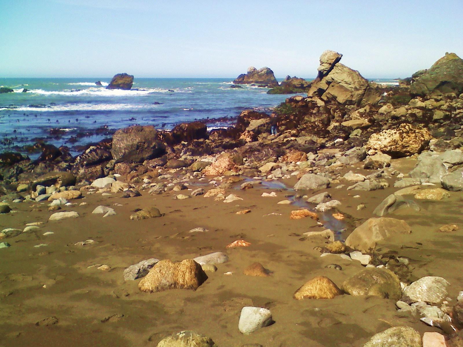 coastroacks.jpg