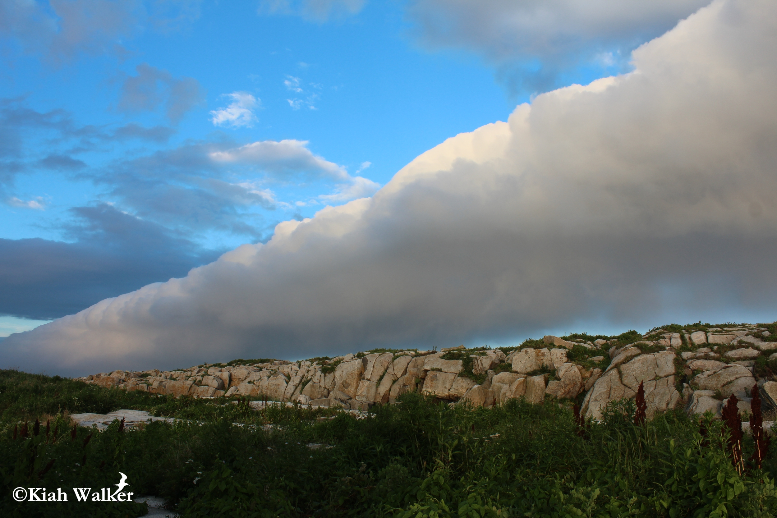Cloud bank over the spine