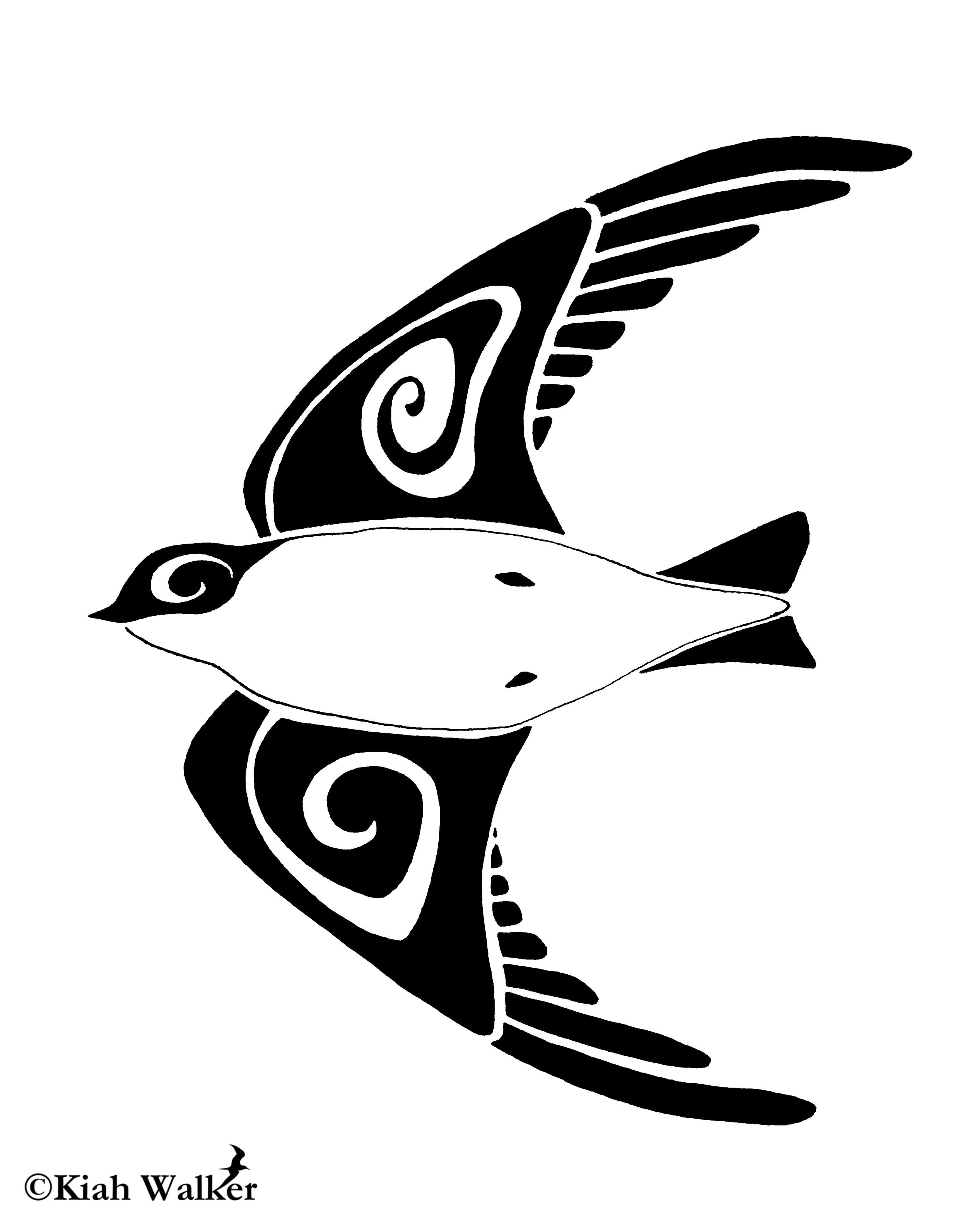 Tree swallow ( Tachycineta bicolor )