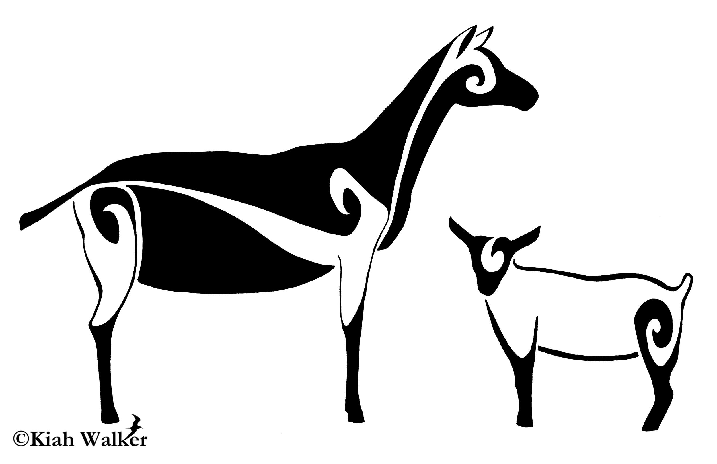 Alpine goats ( Capra aegagrus hircus )