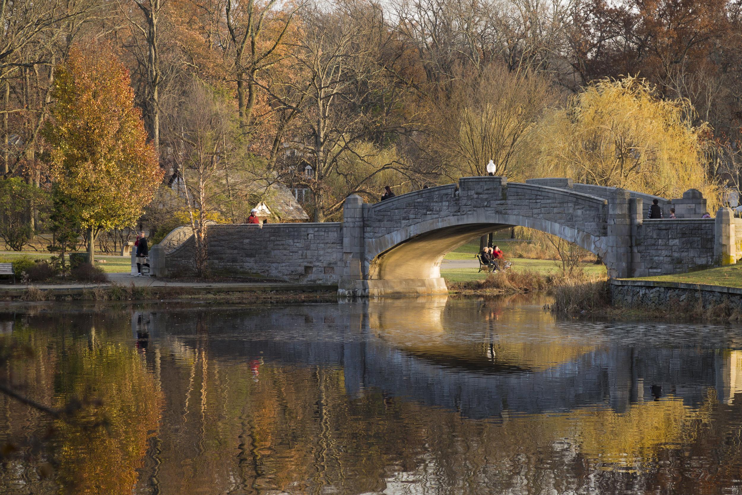 Verona's Bridge