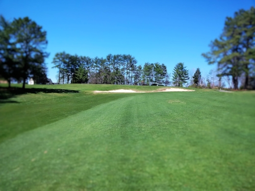 Hole #7, par 5 - A short par 5 on the card, most times you will play this hole in 3 shots. This dogleg right fairway falls away to the left and a large bunker guards the green. Out of bounds runs the entire length of the right side of the fairway.