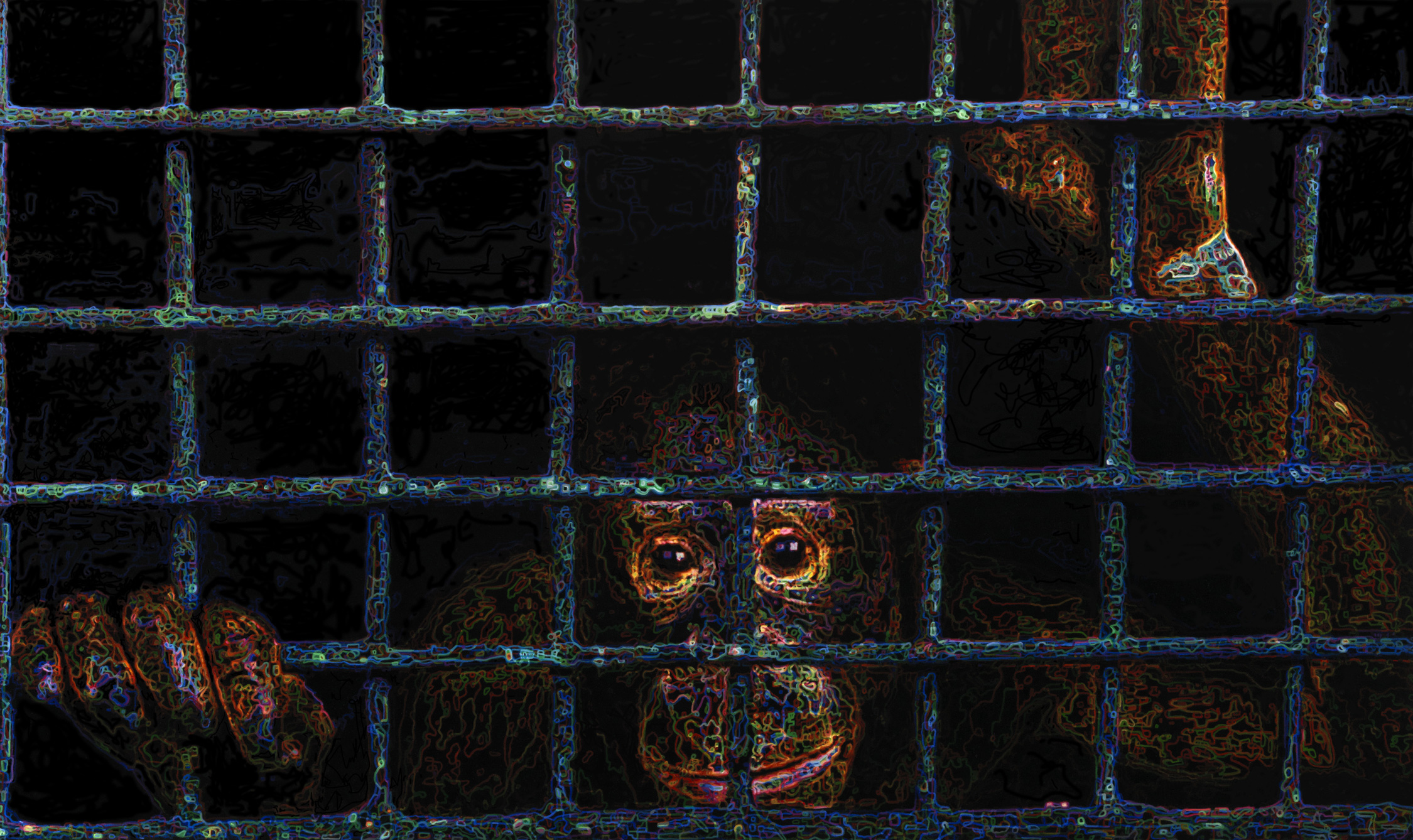 """""""I think the discomfort that people feel in going to the monkey cages at the zoo is a warning sign.""""-Carl Sagan"""