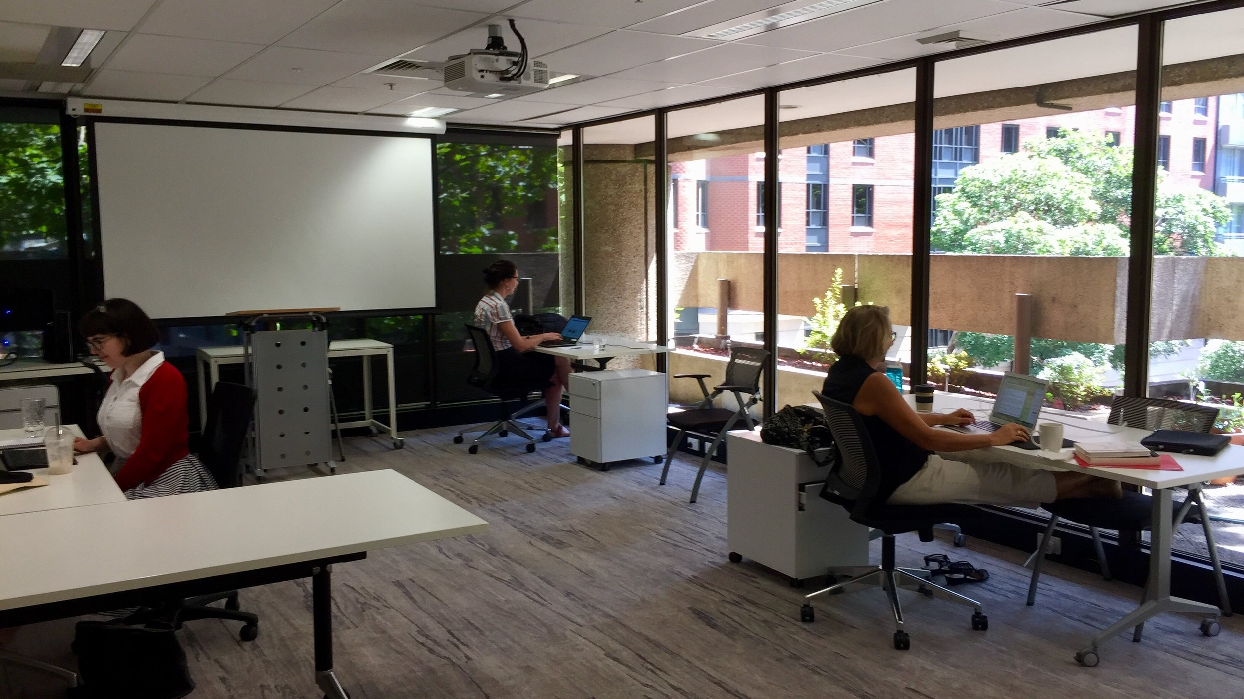 Our Summer Fellows hard at work.