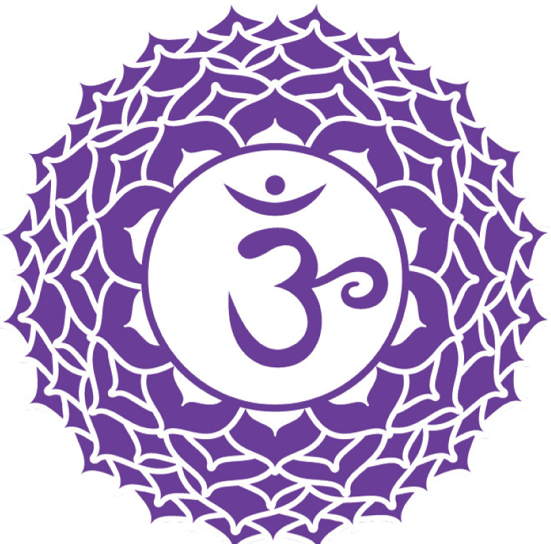 Day 16 of 31 Days of Ayurveda: The Crown/7th Chakra (Violet)