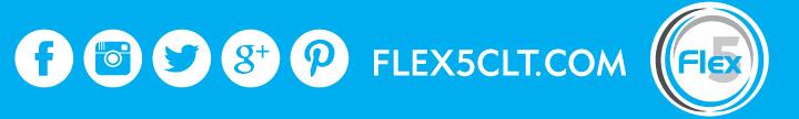 Flex5_sm_layer1.jpg