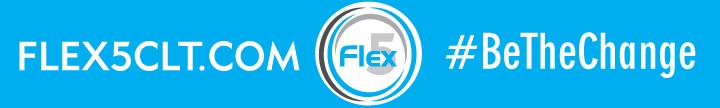 Flex5_sm_layer2.jpg