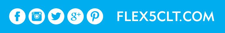 Flex5_sm_layer5.jpg