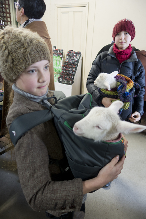 These kids' faces say it all, 'Yup this is my everyday life. I carry around the lambs.'