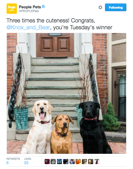 People Magazine's Pet Twitter