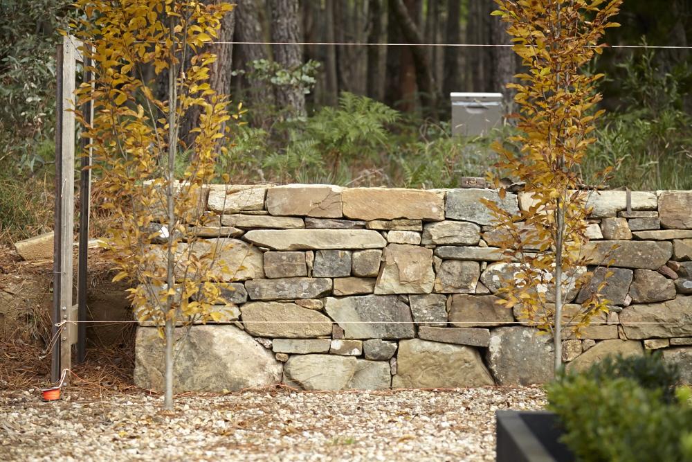 Oak & Monkey puzzle Drystone Walling Workshop_0018.jpg
