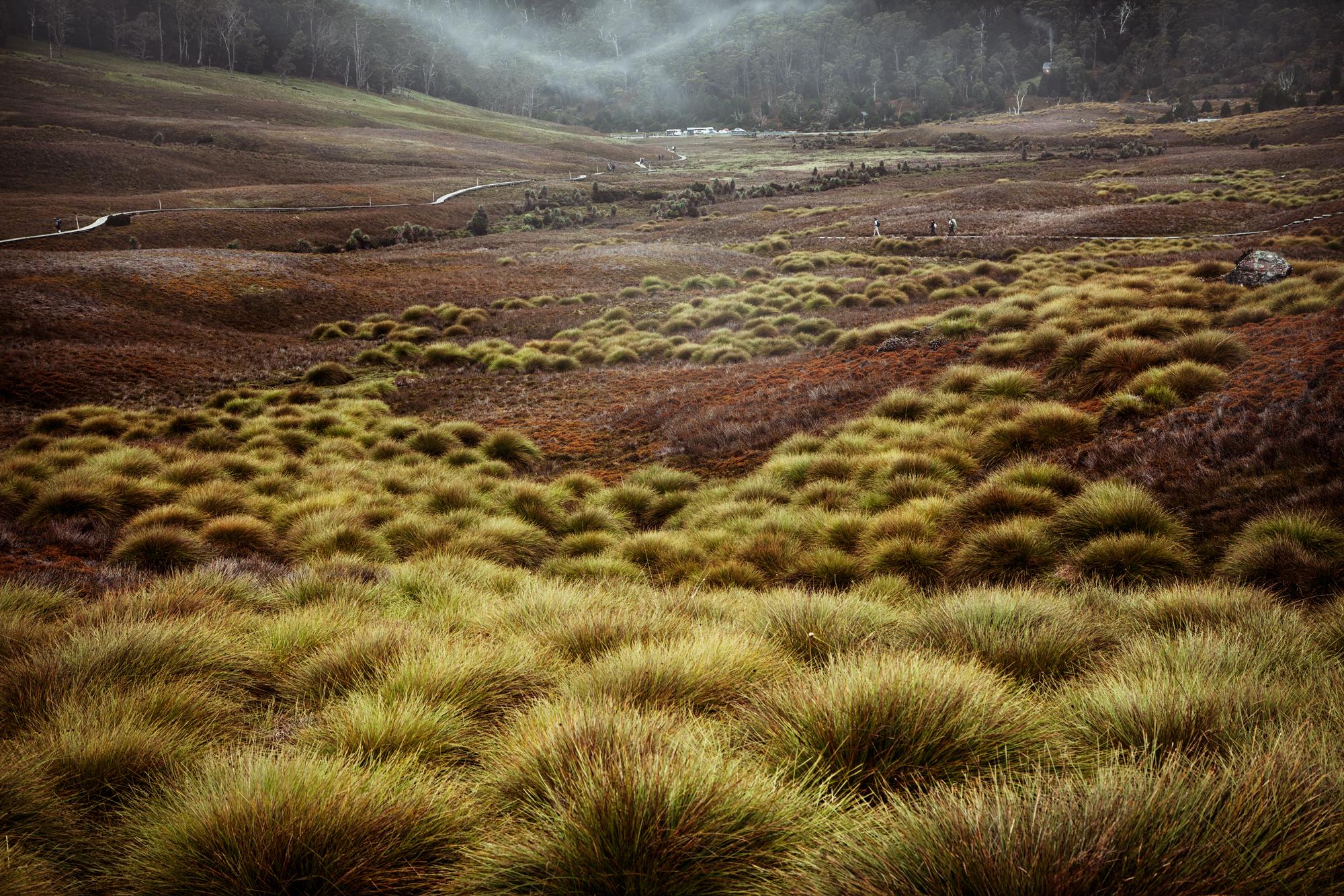 danny-Wootton-photographer-Tasmania-Cradle-Mountain_1.jpg