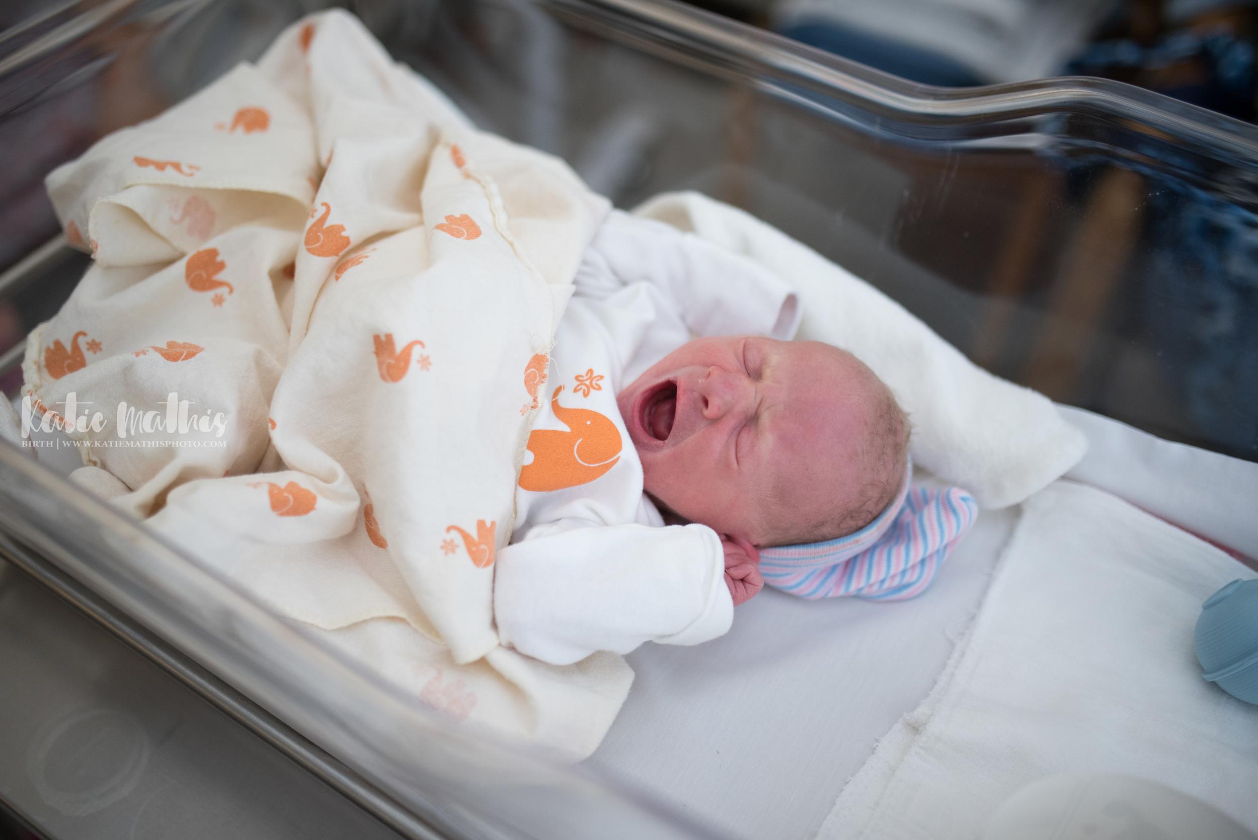 Pelanne Newborn-8630.jpg