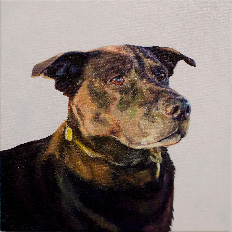 Huund Dog Portraits Commissioned Pet Paintings Custom Oil Painting Nyc Portrait Artist