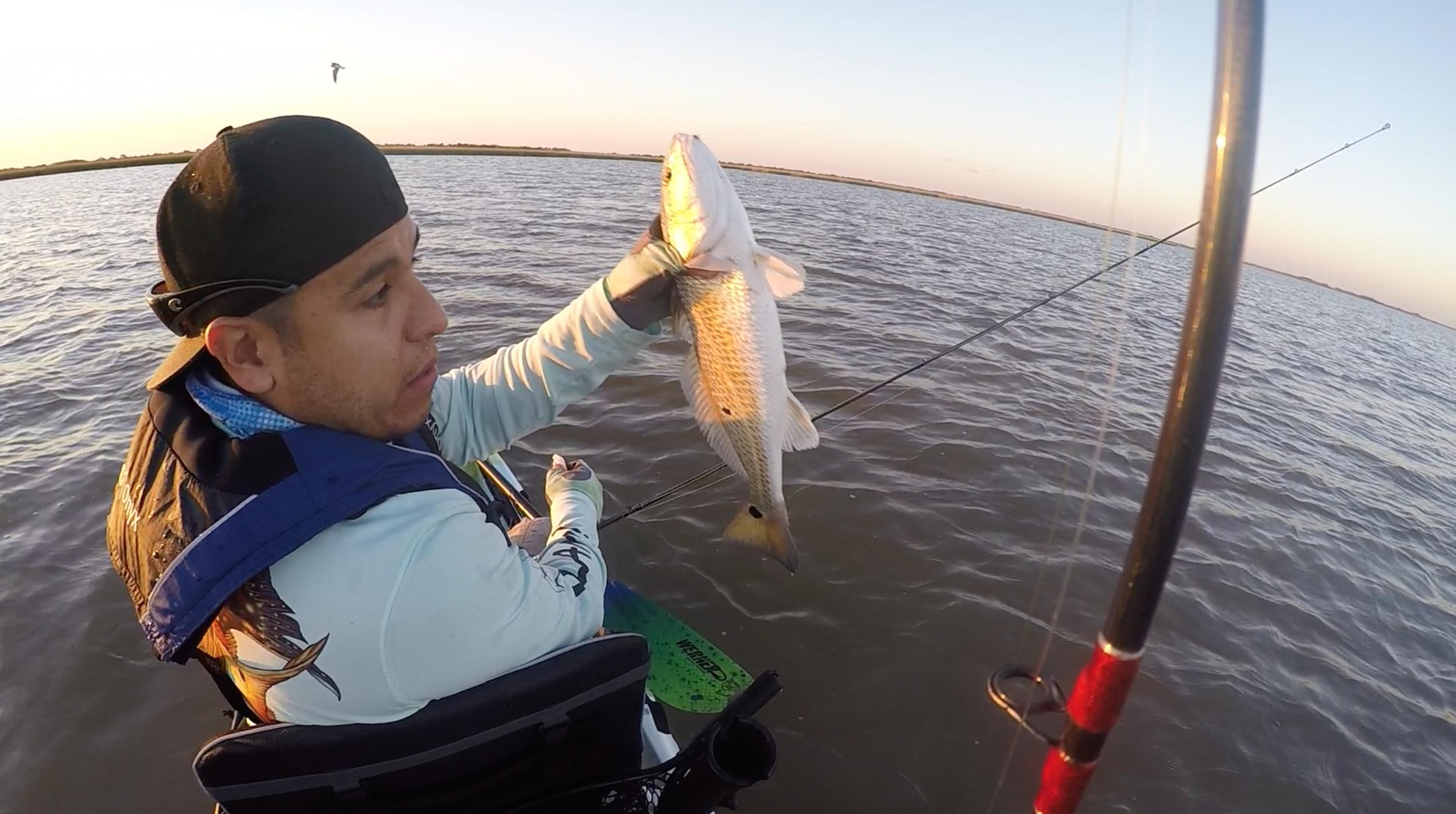 "18"" redfish caught on Z-Man MinnowZ"