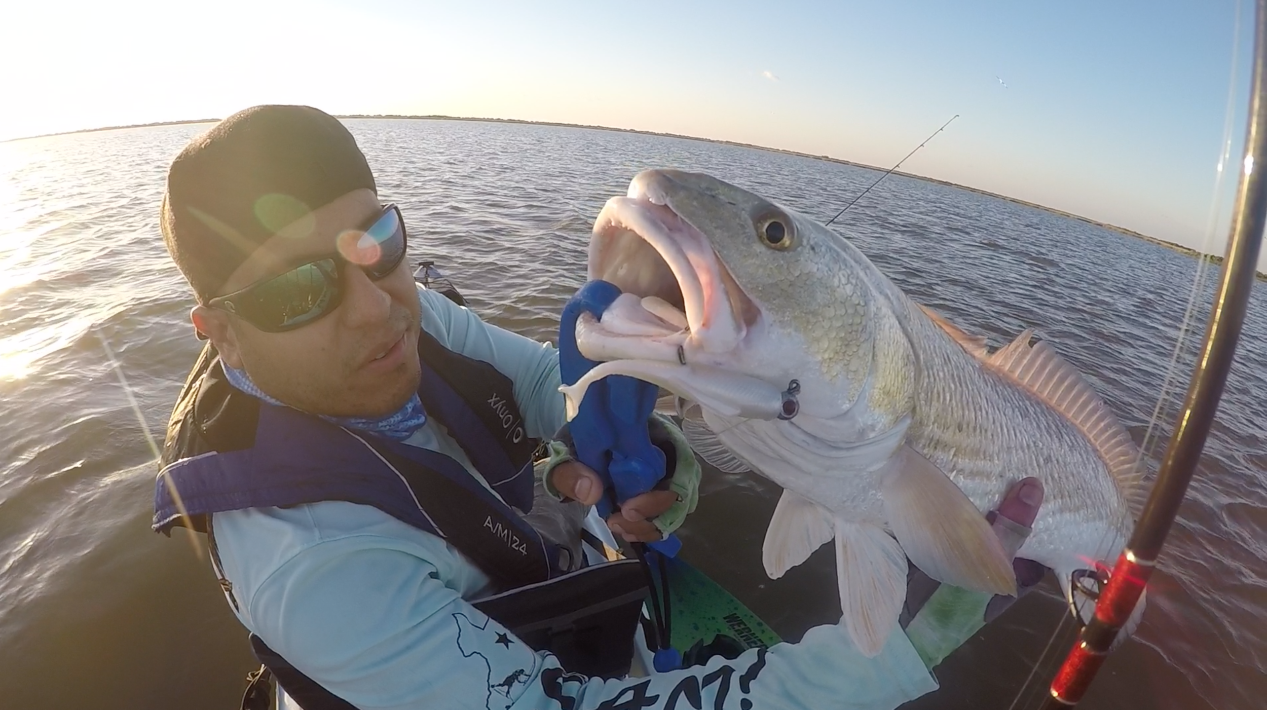 "24"" redfish caught on Z-Man MinnowZ"