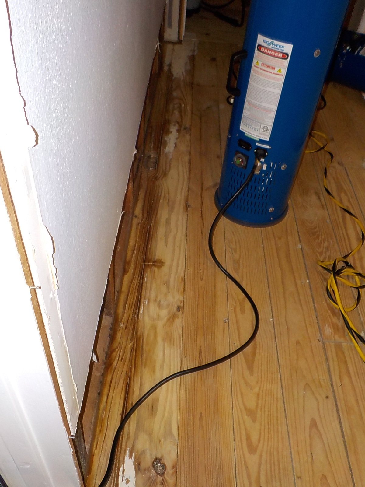 PET URINE REMOVAL - HOUSTON APARTMENT - URINE PENETRATTION IN SUB-WOOD FLOOR. URINE EXTRACTED FROM WOOD THEN ODOR WAS ELIMINATED BY OUIR ADVANCED TECHNOLOGY - HYDROGEN PEROXIDE.