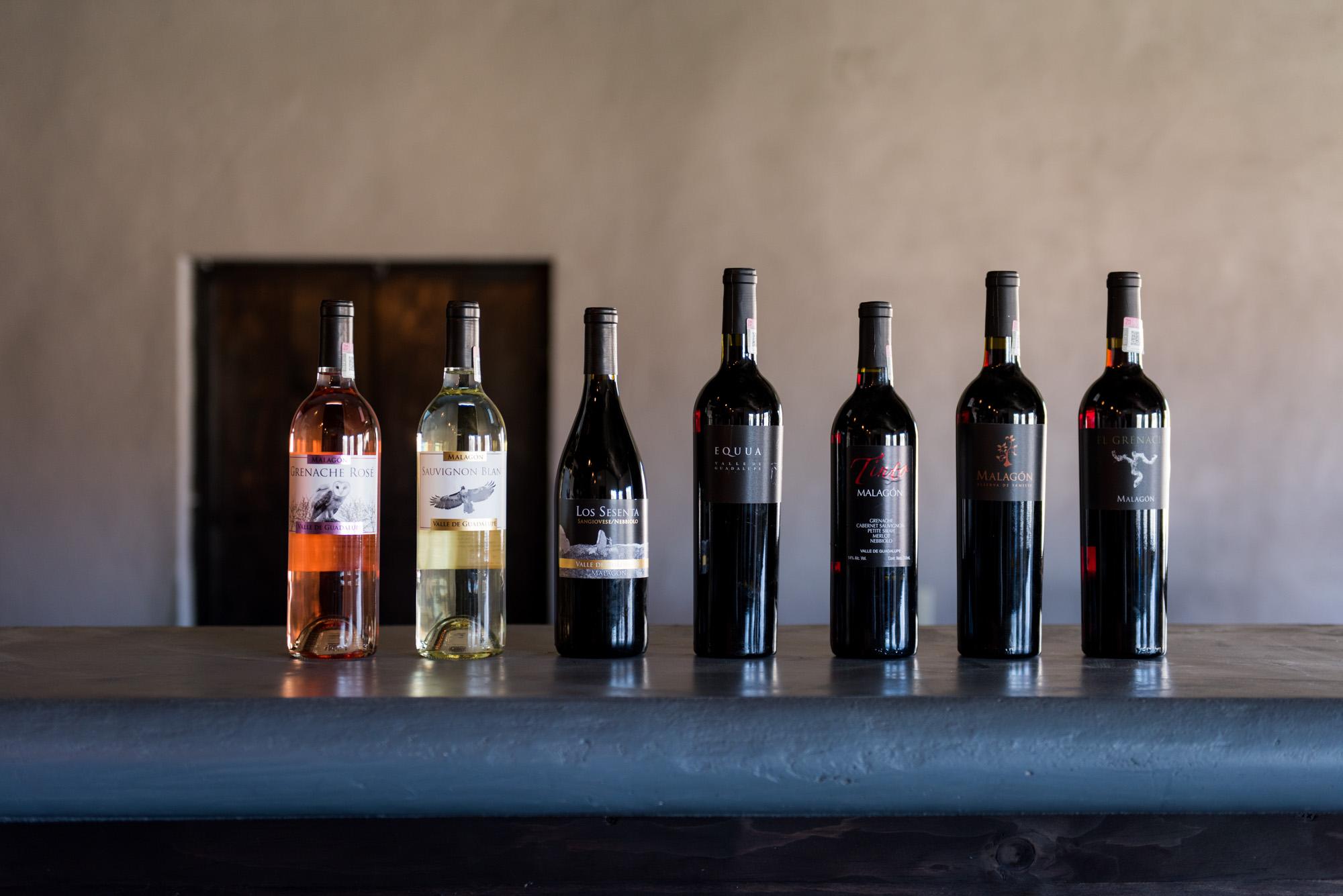 Viñedos/Vineyards Malagon | Valle De Guadalupe, North Baja, México