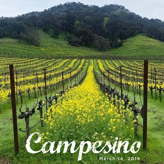 "Come learn about ""the keepers of the vines"" with @campesinocellars March 14th. ✅ out our 🔗 in bio ✨"