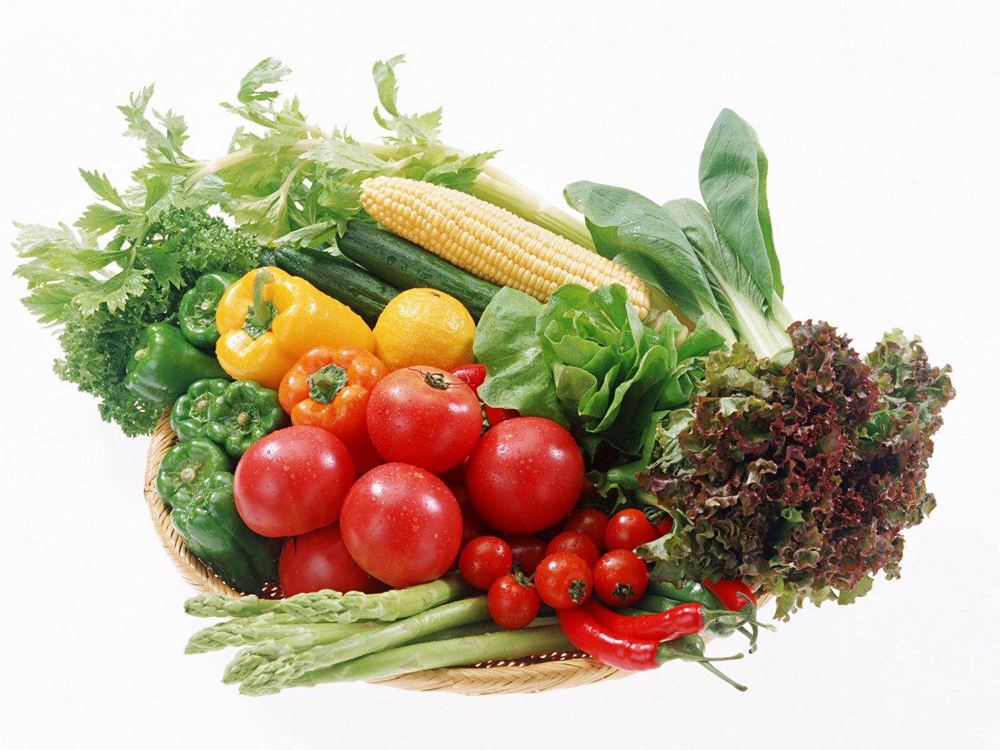 Book-Vegetable-Header[1].jpg