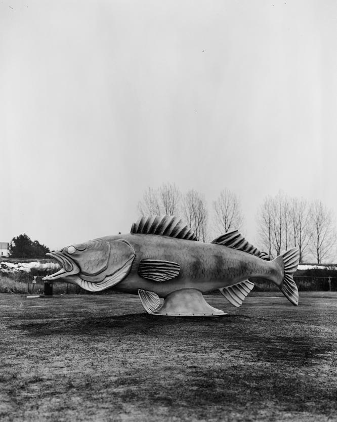 Fish Statue_edit_666.jpg