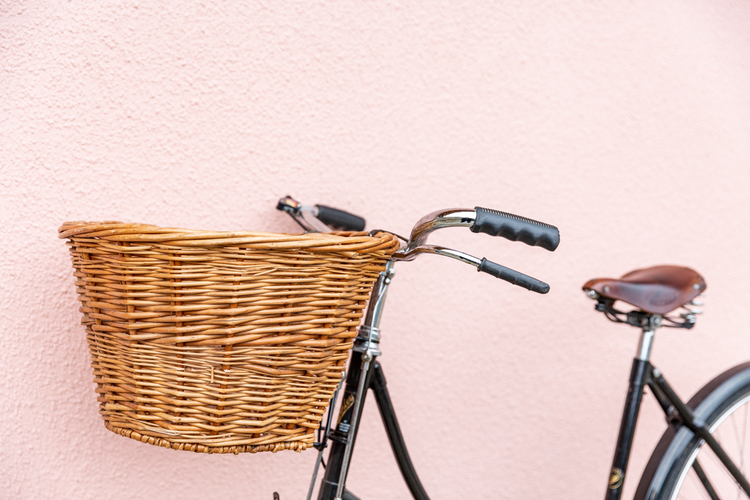 Our Vintage Bicycle