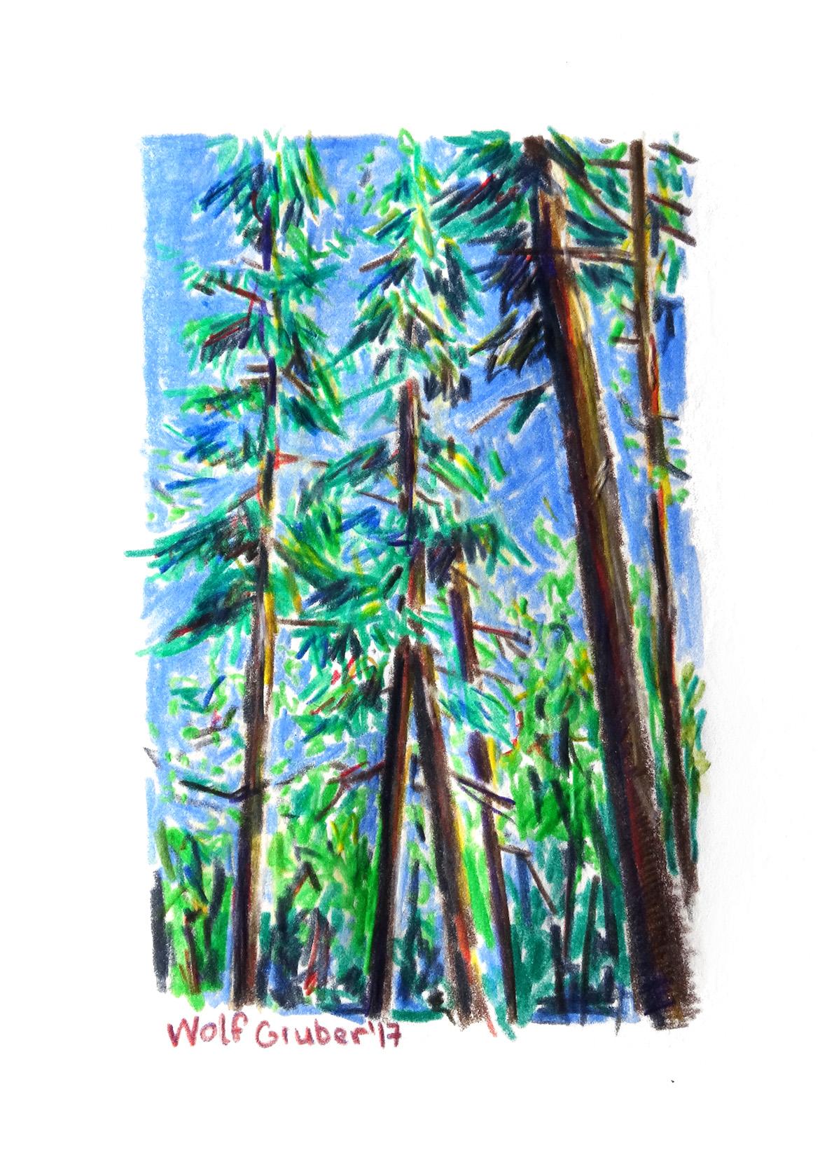 Wald3.17-150.jpg