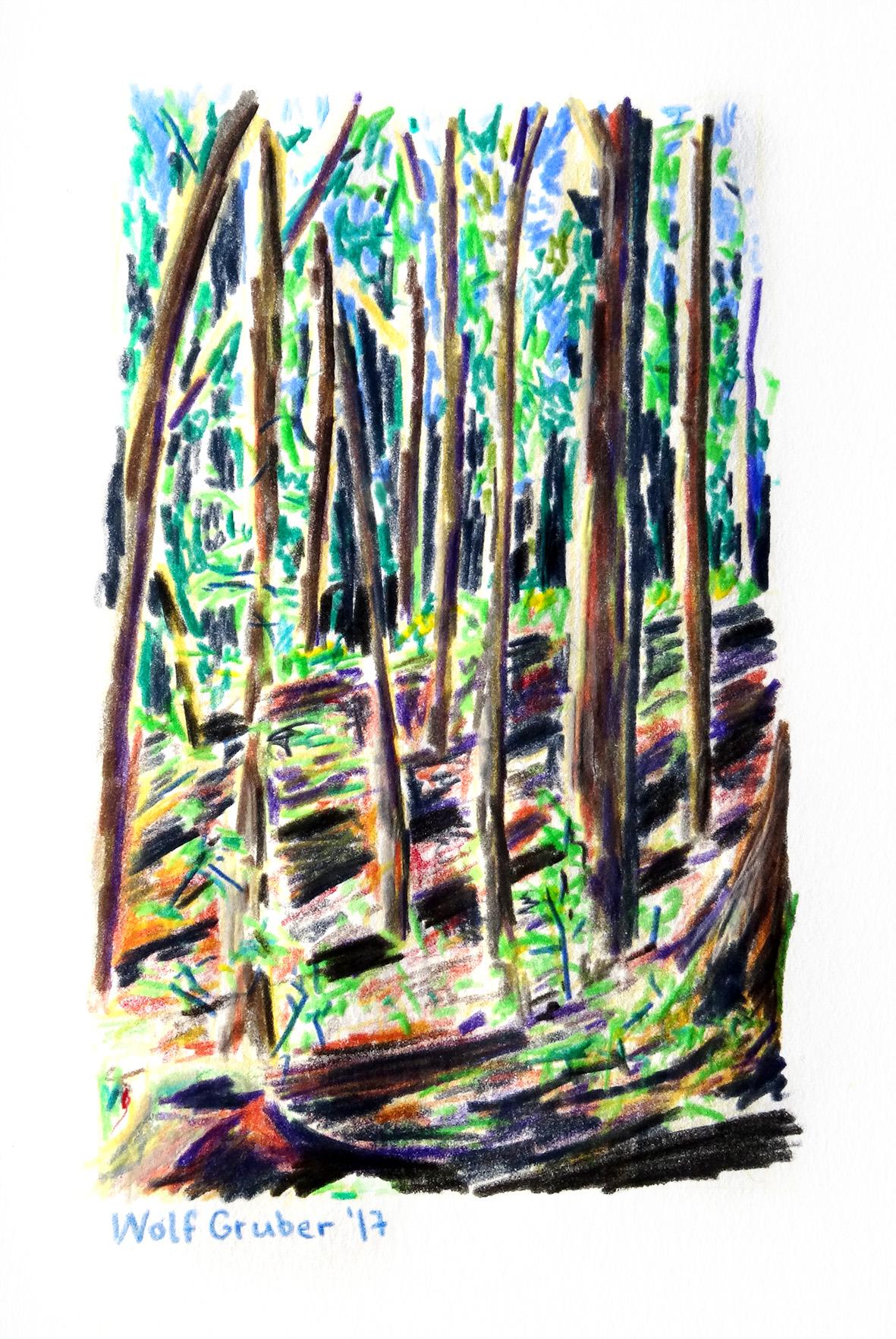 Wald2-17-150.jpg