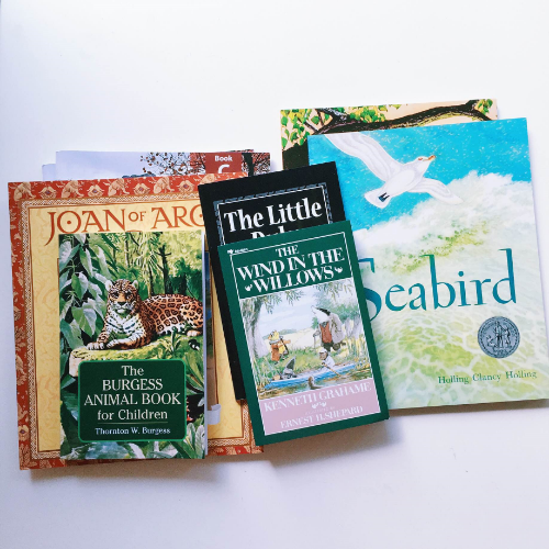 our year 2 books. you can get the complete list from ambleside online dot org.