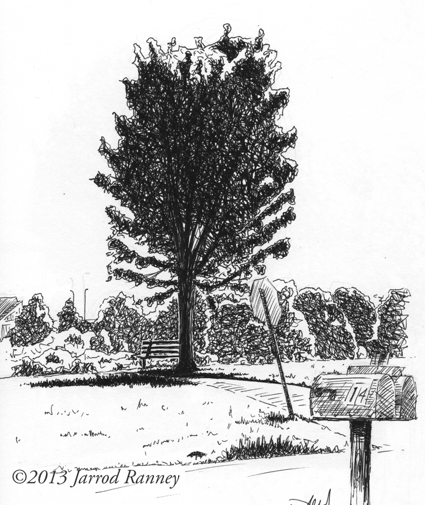 tree-bench-field-small.jpg
