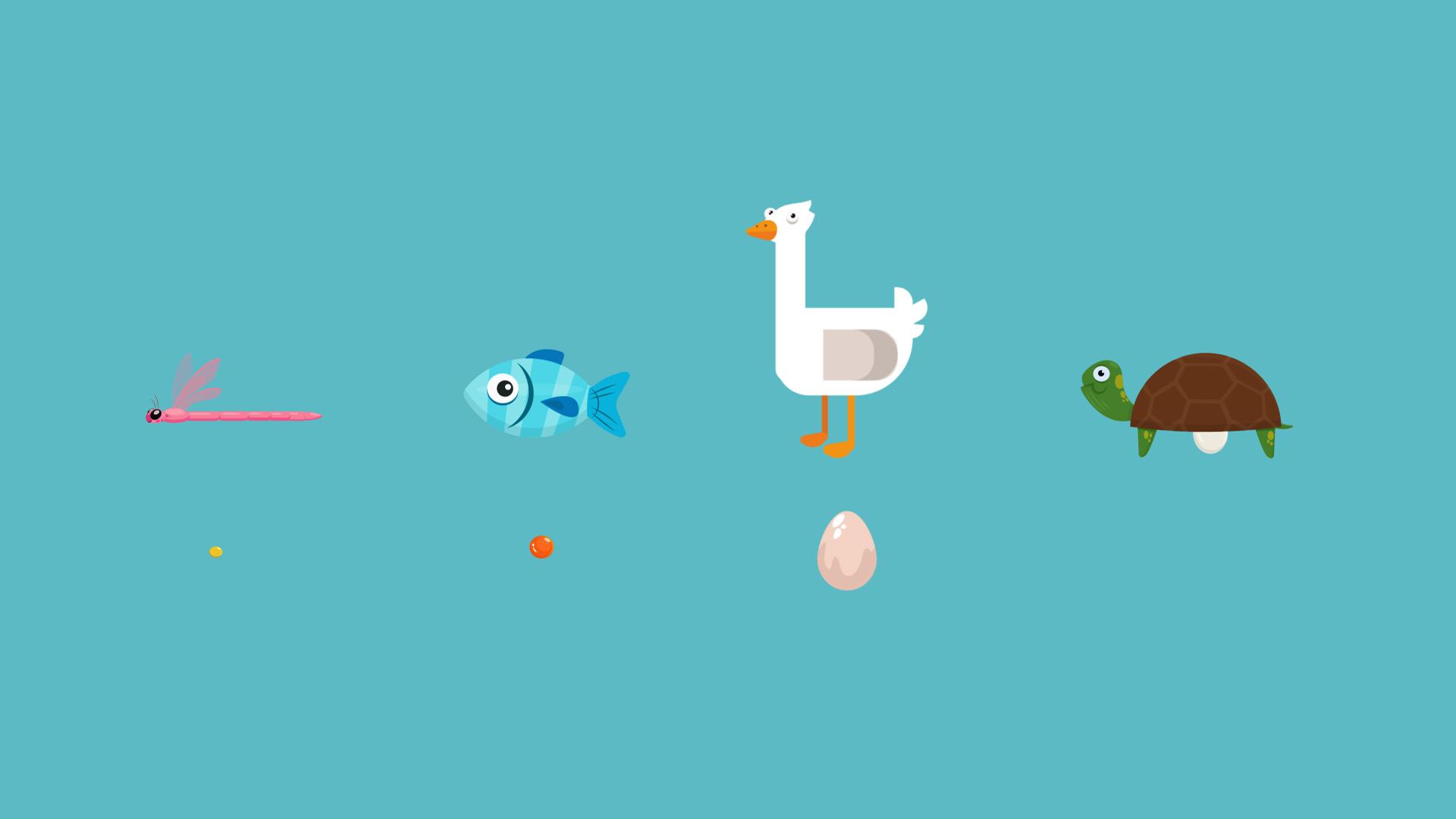 How do animals reproduce?