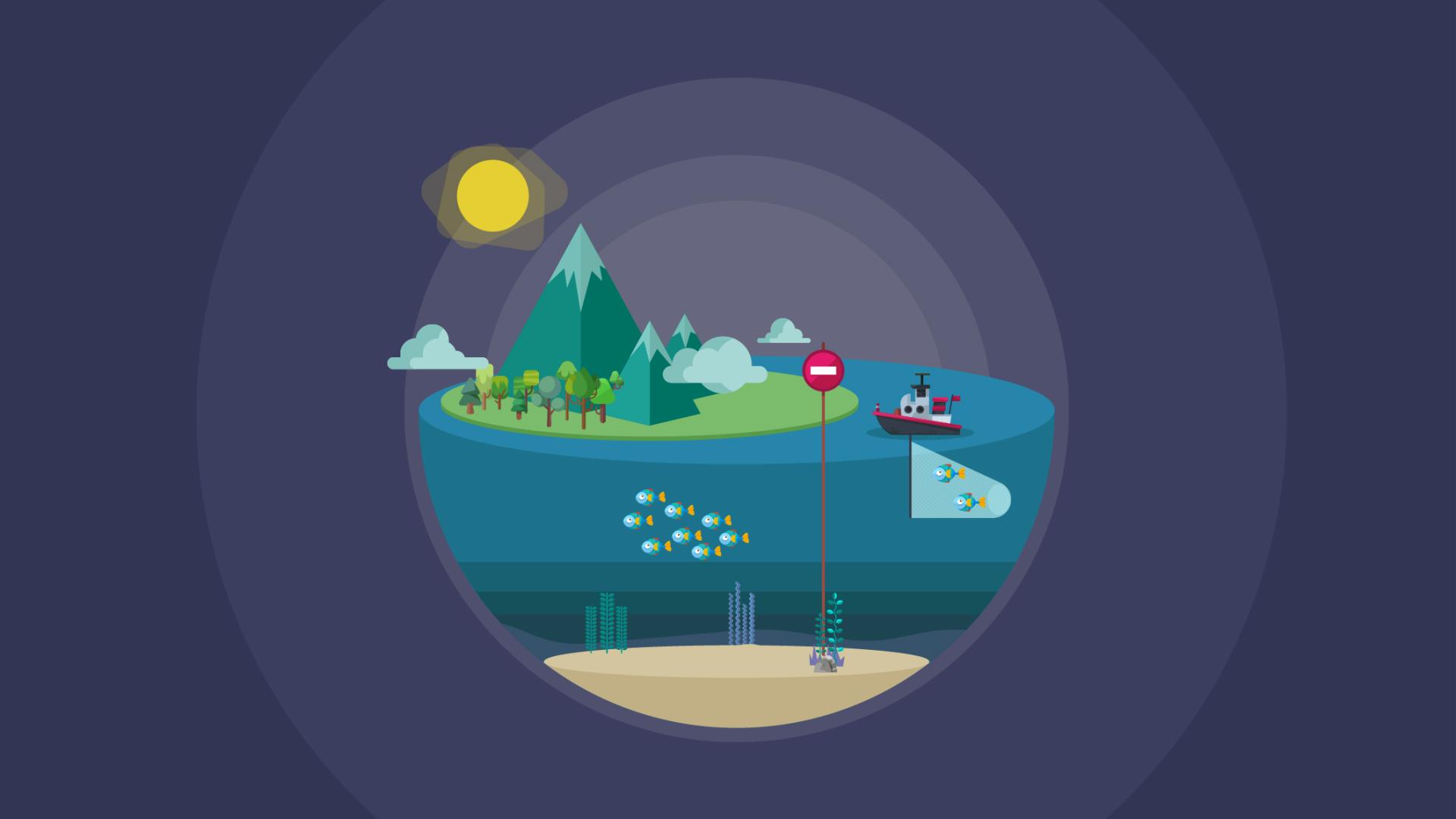 Human impact on ecosystems