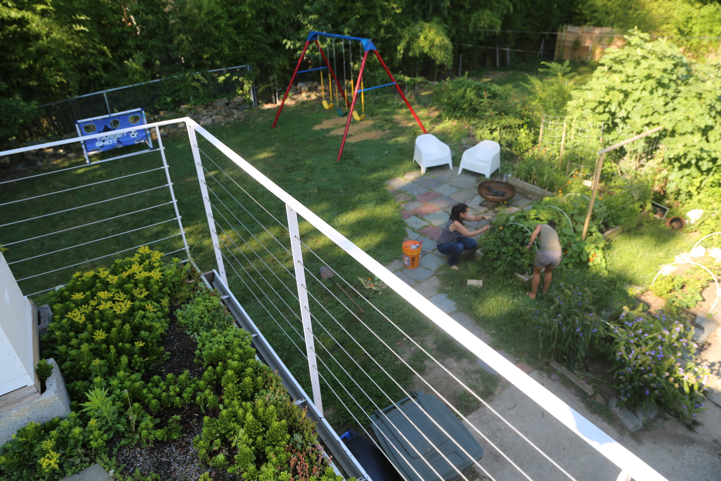 Raised Bed Garden with Rooftop Maintenance - Palisades, DC