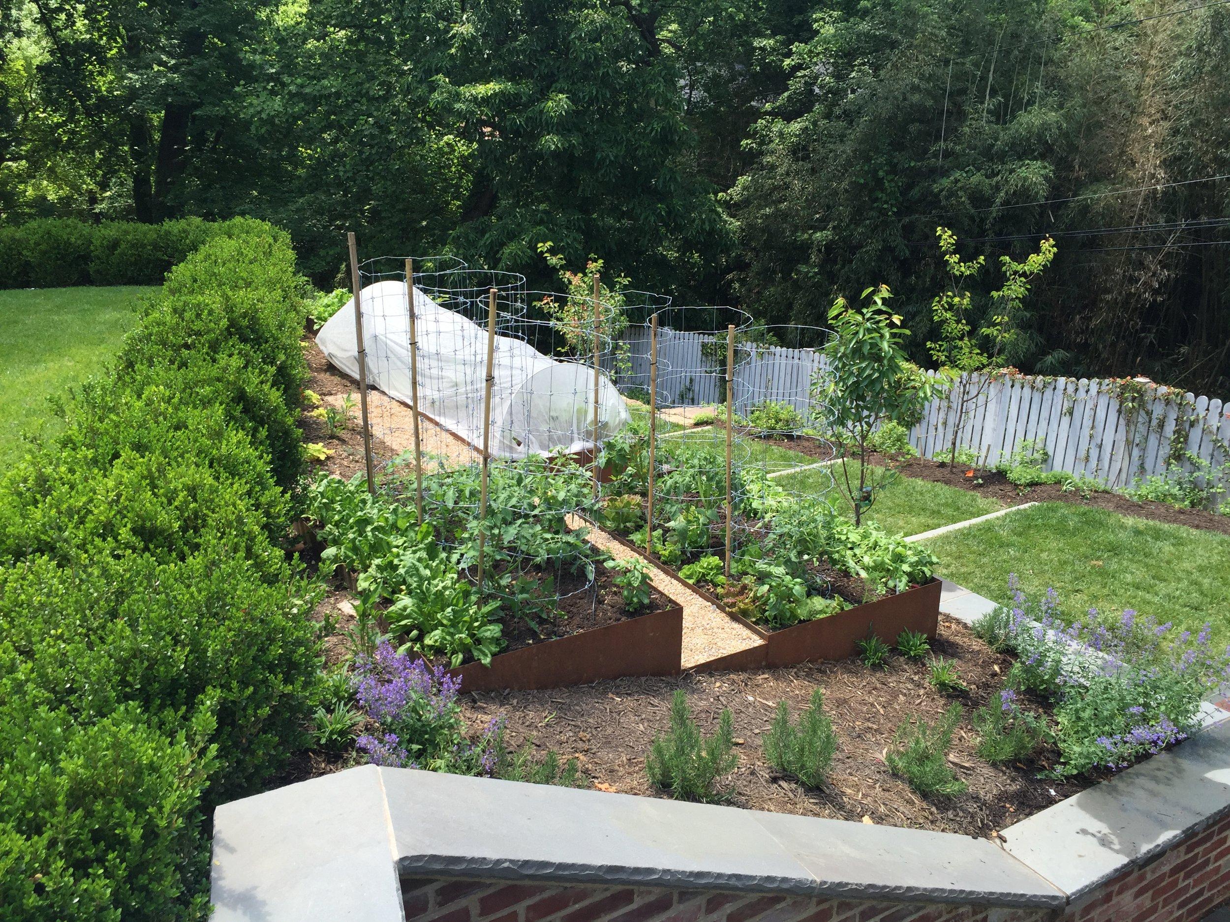 Custom Metal Raised Bed Garden - Northwest, DC