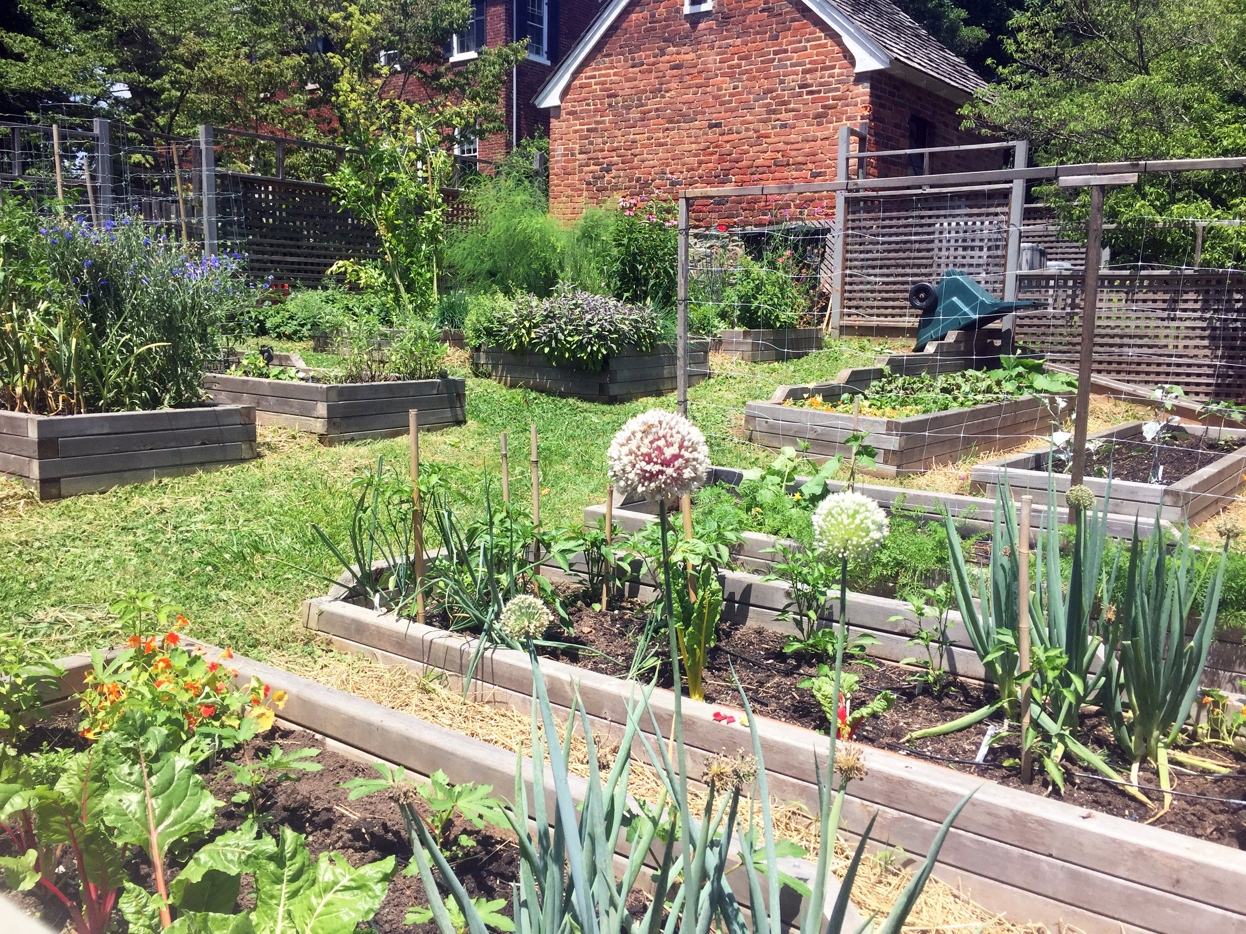 Raised Bed Garden, Thick Sides, Sloped