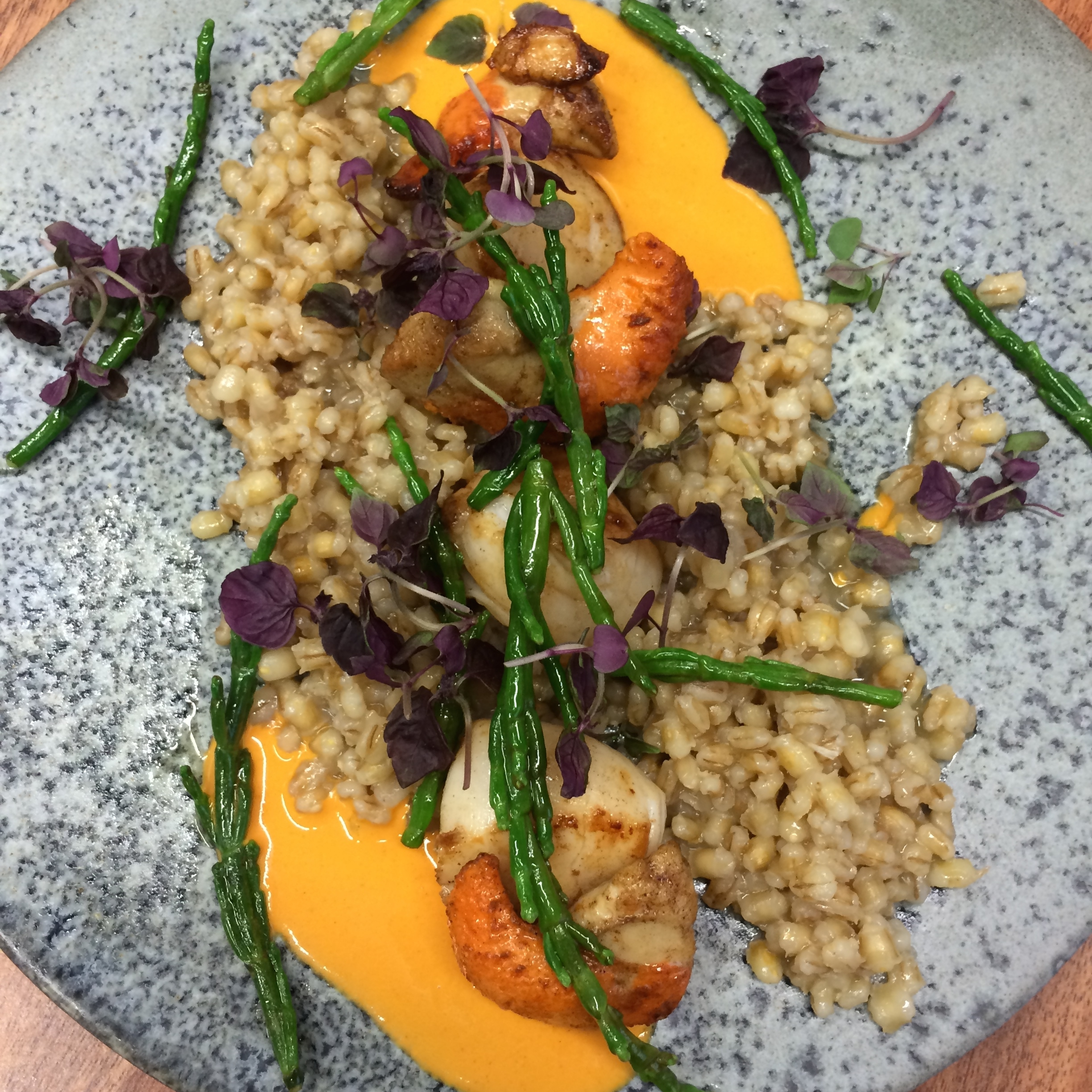 Seared scallops with barley salad and samphire