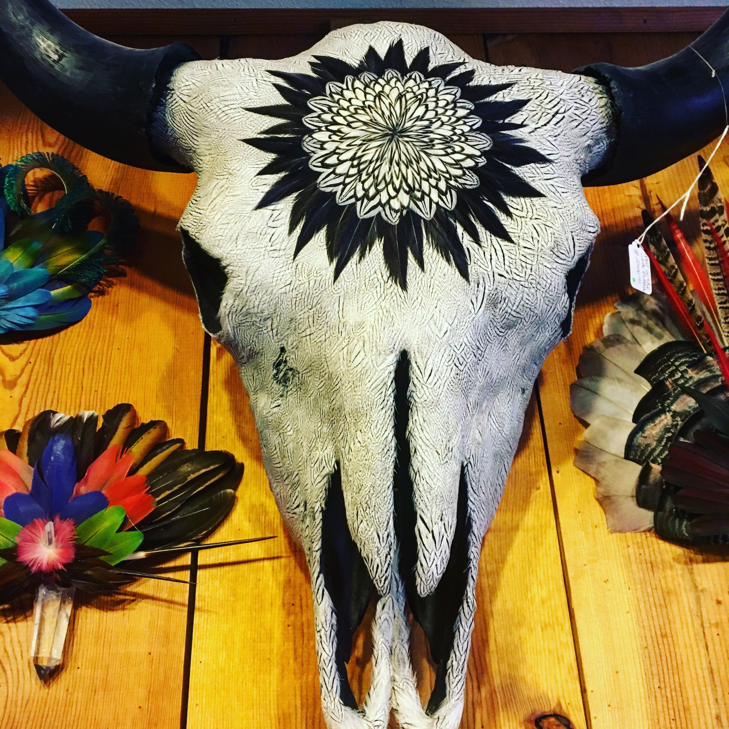 A gorgeous feather-adorned bison skull at Clear Creek Trading Company