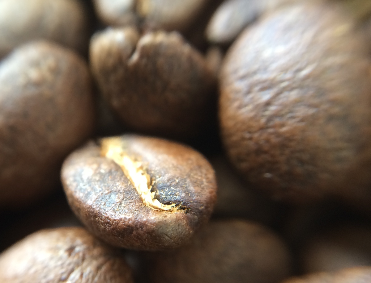 Sementes de café torradas.