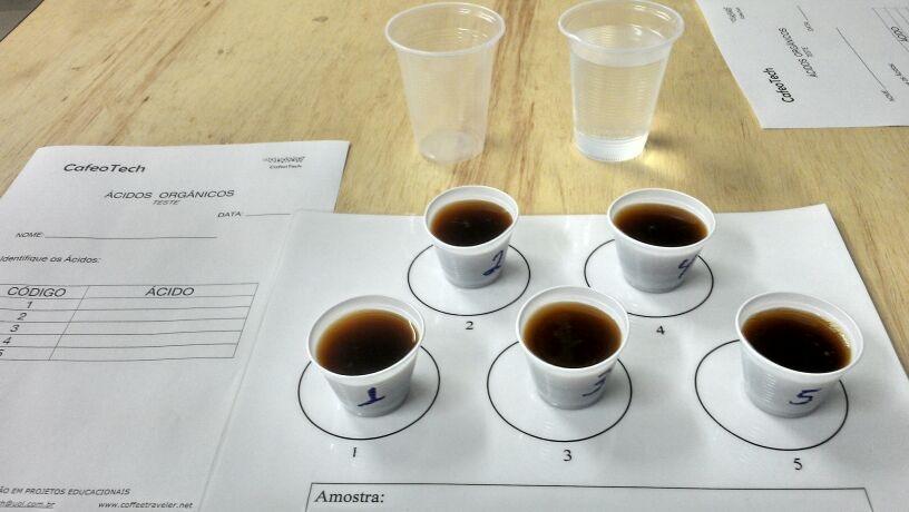 Teste de Ácidos do Café. Foto: Ensei Neto/Arquivo Pessoal.