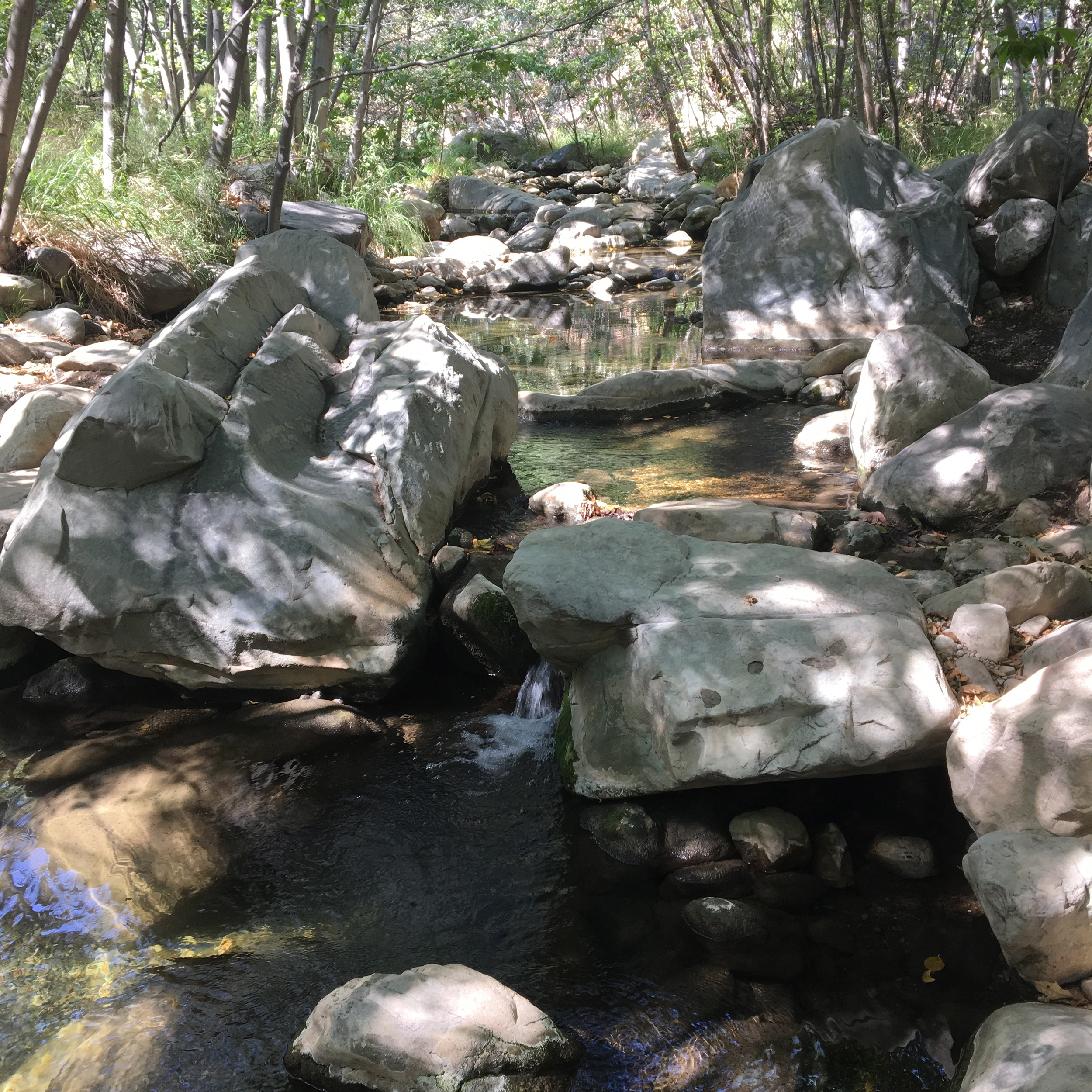 Perfect little creek for cooling off.